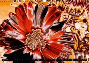 Floral Colour Play (Wall Calendar 2015 DIN A3 Landscape)