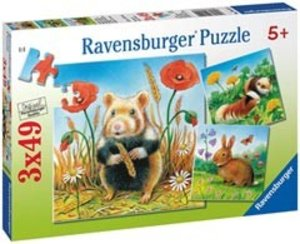 Ravensburger 09414 - Niedliche Nager, 3 x 49 Teile Puzzle