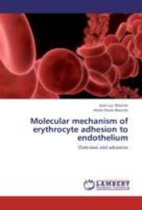 Molecular mechanism of erythrocyte adhesion to endothelium