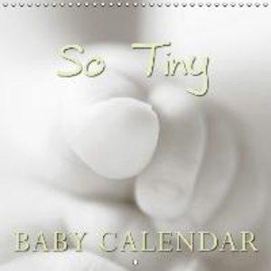 So Tiny Baby Calendar (Wall Calendar 2015 300 × 300 mm Square)