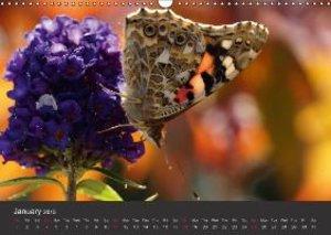 Beings of Lightness Butterflies (Wall Calendar 2015 DIN A3 Lands