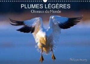 PLUMES LÉGÈRES. Oiseaux du Monde (Calendrier mural 2015 DIN A3 h