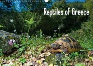 Reptiles of Greece / UK-version (Wall Calendar 2015 DIN A3 Lands