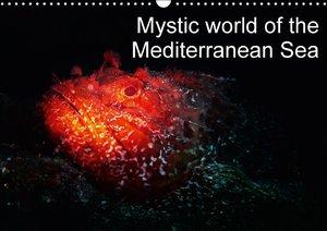 Hampe, G: Mystic World of the Mediterranean Sea / UK-Version