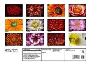 Sonate - Visuelle Musik der Blumen (Posterbuch DIN A3 quer)