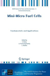 Mini-Micro Fuel Cells