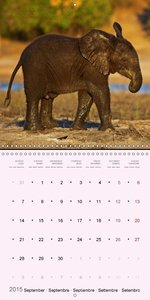 Journey through Botswana (Wall Calendar 2015 300 × 300 mm Square