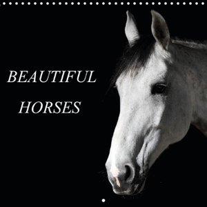BEAUTIFUL HORSES (Wall Calendar 2015 300 × 300 mm Square)