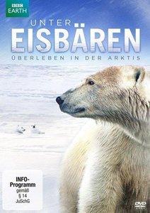 Unter Eisbären - Überleben in der Arktis