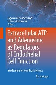 Extracellular ATP and adenosine as regulators of endothelial cel