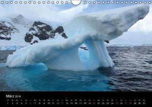 Die Antarktis (Wandkalender 2016 DIN A4 quer)