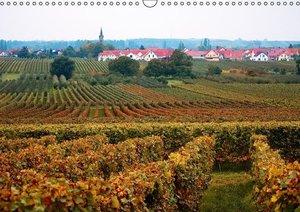 Herbstliches aus der Pfalz (PosterbuchDIN A3 quer)