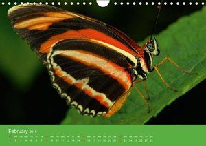 Close to the ground (Wall Calendar 2015 DIN A4 Landscape)