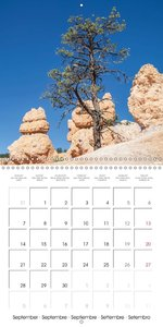 BRYCE CANYON Idyllic Landscape (Wall Calendar 2015 300 × 300 mm