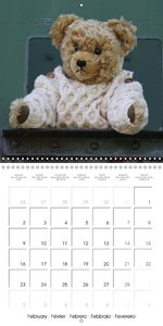 Teddy Bear on the way (Wall Calendar 2015 300 × 300 mm Square)