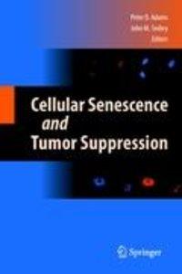 Cellular Senescence and Tumor Suppression