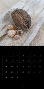 Beach treasures 2015 (Wall Calendar 2015 300 × 300 mm Square)