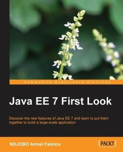 Java EE 7 First Look
