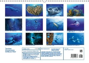 Tauchen: Wunderbares tiefblaues Meer (Wandkalender 2016 DIN A3 q