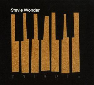 Stevie Wonder Tribute