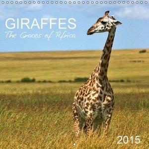 Giraffes - The Graces of Africa (Wall Calendar 2015 300 &times 3