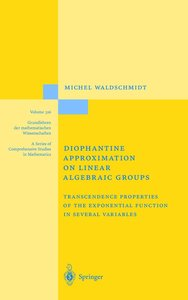 Diophantine Approximation on Linear Algebraic Groups
