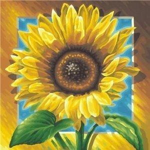Schipper 609250411 - Sonnenblumen, MNZ, Malen nach Zahlen