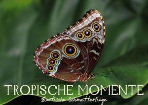 Tropische Momente - Exotische Schmetterlinge (Posterbuch DIN A3