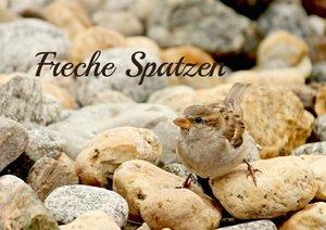 Freche Spatzen (Posterbuch DIN A3 quer)