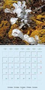 2,500 meters above the sea (Wall Calendar 2015 300 × 300 mm Squa