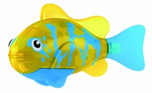 Robo Fish Bicolor Angelfish