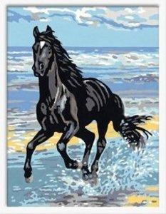 Ravensburger 28092 - Pferd am Strand, MNZ, Malen nach Zahlen