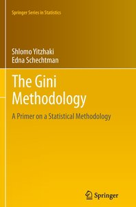 The Gini Methodology
