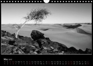 The dunes of Amatlich (Wall Calendar 2015 DIN A4 Landscape)