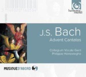 Advent Cantatas