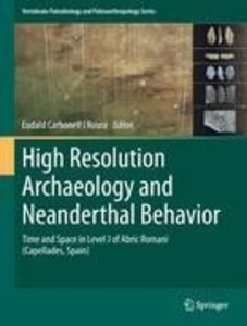 High Resolution Archaeology and Neanderthal Behavior