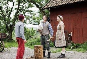 Nils Holgerssons wunderbare Reise - TV-Mehrteiler