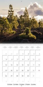 Tenerife - Volcanic Landscapes (Wall Calendar 2015 300 × 300 mm