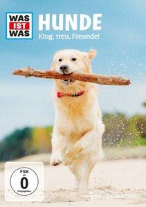 Was ist was DVD: Hunde. Klug, treu, Freunde!