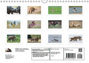 Emotional Moments: Wild Animal Sex. UK-Version (Wall Calendar 20