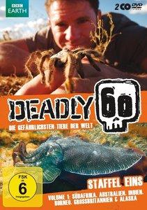 Deadly 60-Die Gefährlisten Tiere Der Welt