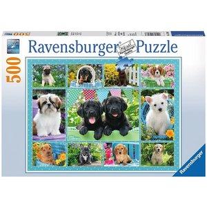 Ravensburger 14708 - Putzige Hündchen, Puzzle, 500 Teile