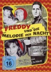 Freddy und die Melodie der Nacht