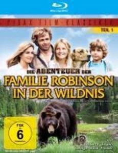 Die Abenteuer der Familie Robi