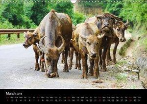 North Vietnam (Wall Calendar 2015 DIN A3 Landscape)