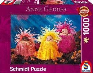 Anne Geddes, Kleine Meeresschätze, 1.000 Teile