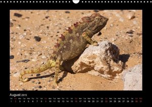 Southern Africa 2015 (Wall Calendar 2015 DIN A3 Landscape)