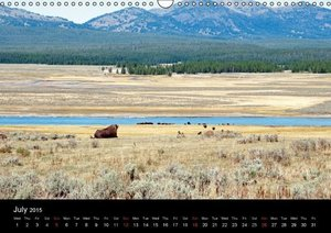 Beautiful Yellowstone and Grand Tetons National Parks (Wall Cale