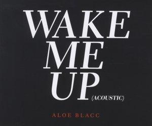 Wake Me Up (2-Track)