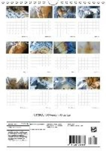 UTOPIA / UK-Version / Organizer (Wall Calendar 2015 DIN A4 Portr